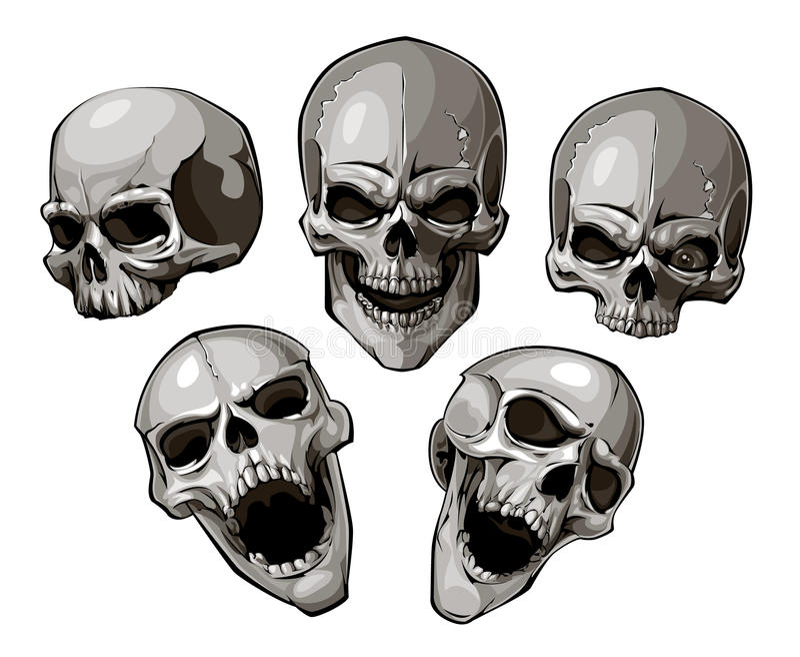 Grupo de crânios ilustração do vetor