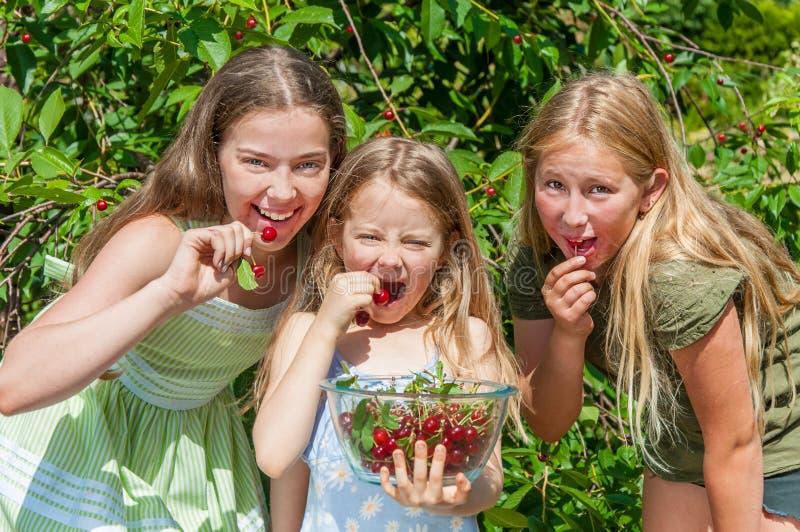 Grupo de crianças felizes que comem a cereja imagens de stock royalty free