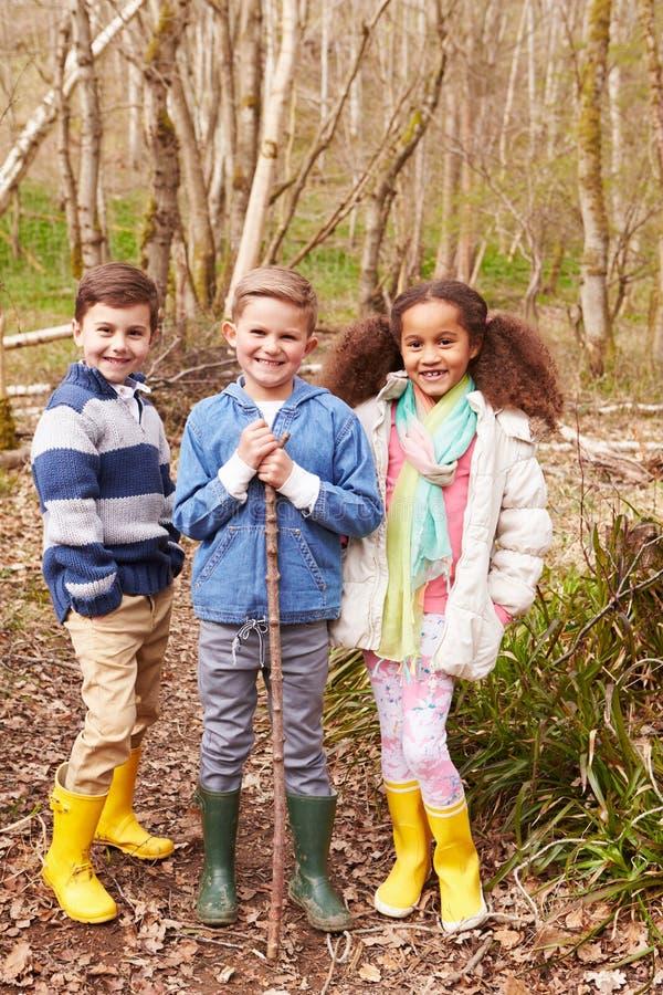 Grupo de crianças que jogam o jogo na floresta imagens de stock