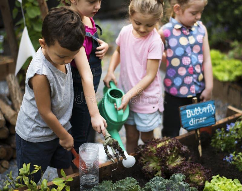 Grupo de crianças que molham as plantas fotos de stock
