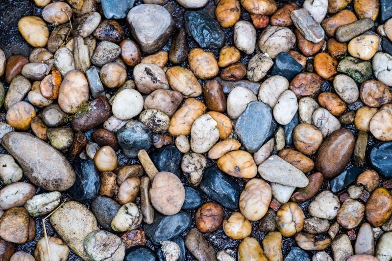 Grupo de decoração da pedra do rio para o fundo Pedras na água no primeiro plano imagem de stock