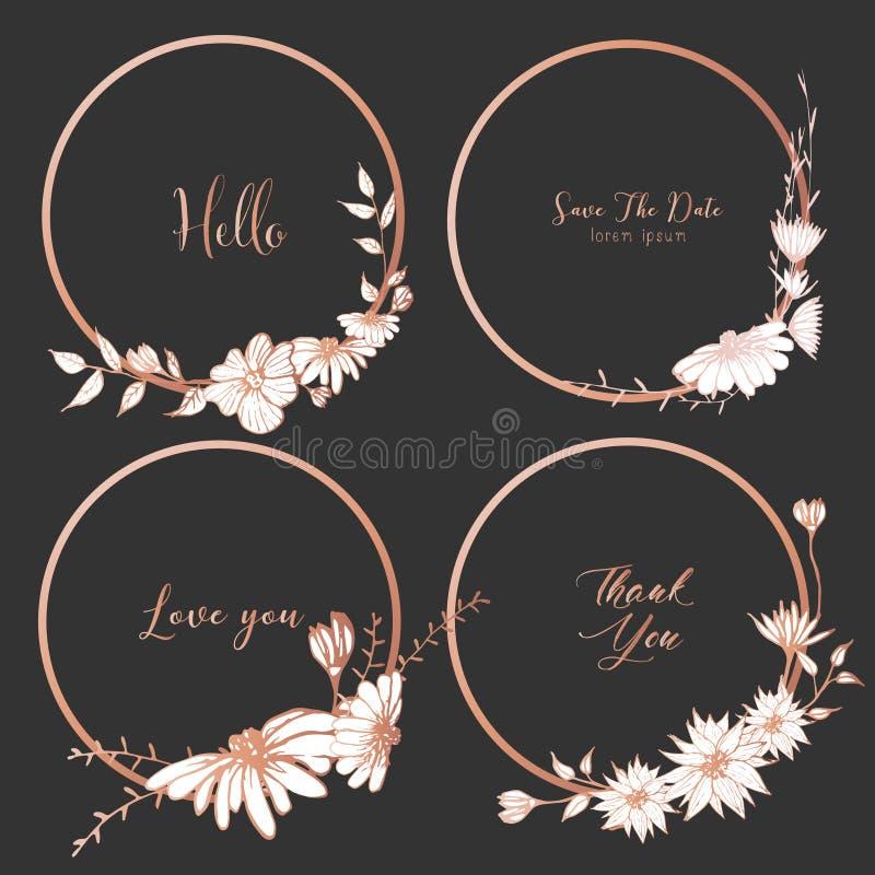 Grupo de divisores em volta dos quadros, flores tiradas mão, composição botânica, elemento decorativo para o cartão de casamento ilustração do vetor