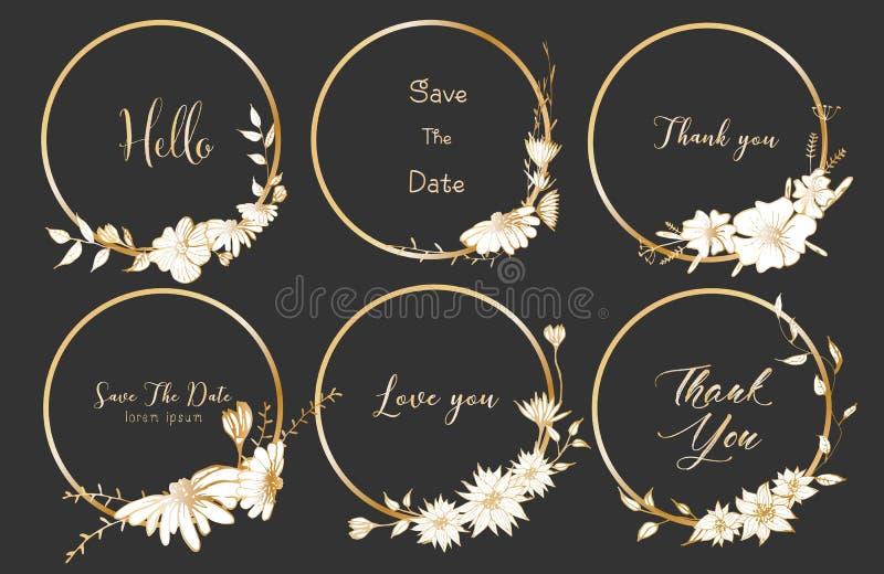 Grupo de divisores em volta dos quadros, flores tiradas mão, composição botânica, elemento decorativo para o cartão de casamento ilustração royalty free