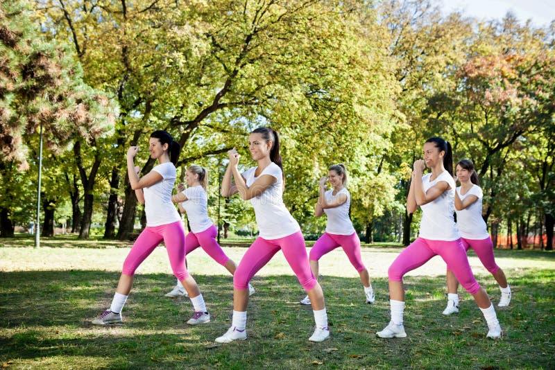 Grupo de ejercicio de las mujeres fotografía de archivo