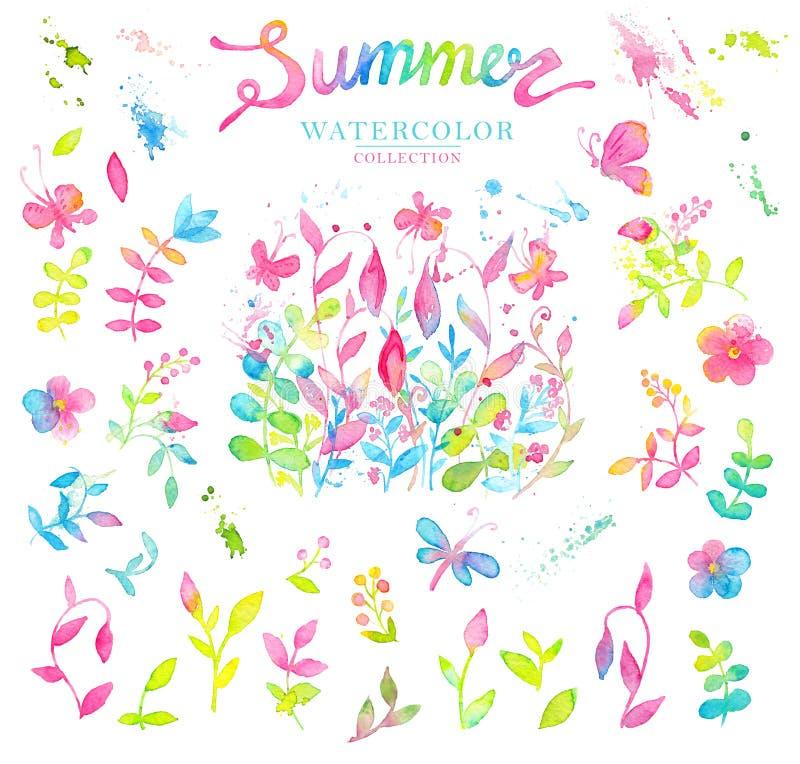 Grupo de elementos brilhantes e felizes do design floral do verão tirados com aquarelas ilustração stock