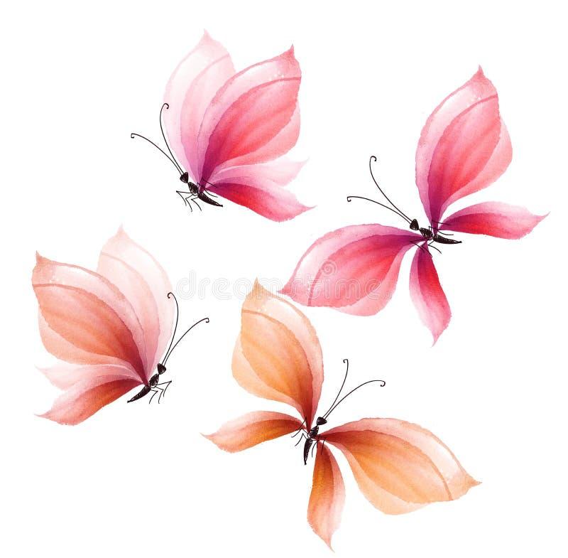 Grupo de elementos extravagante do projeto da borboleta Ilustração desenhada mão ilustração royalty free