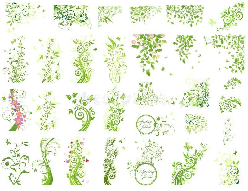 Grupo de elementos verdes do design floral ilustração do vetor