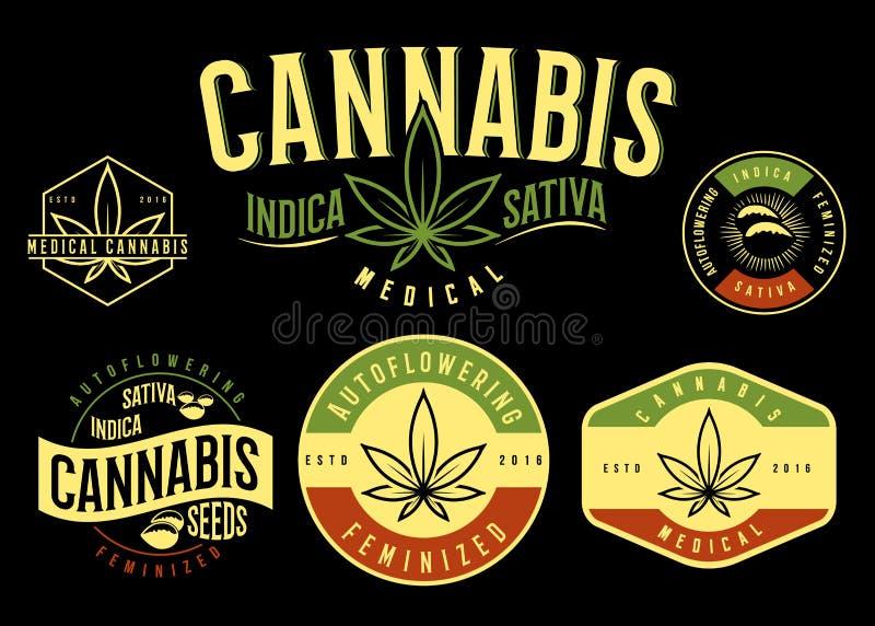 Grupo de emblema médico do cannabis, logotipo Estilo clássico do vintage ilustração do vetor