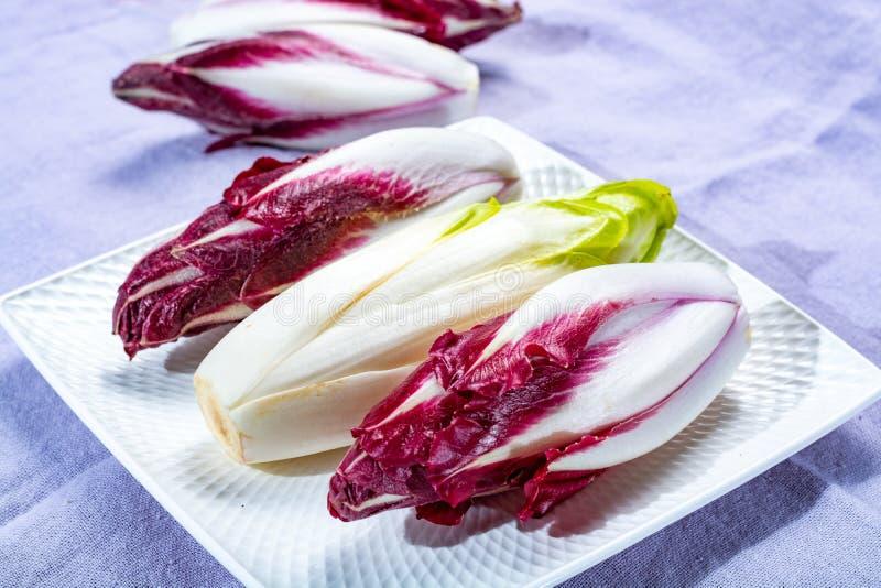 Grupo de endívia belga ou chicória verde fresca e vegetais vermelhos do Radicchio, igualmente conhecido como o salade do witlof imagens de stock royalty free