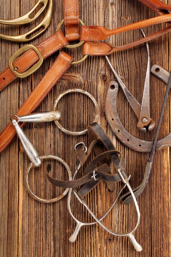 Grupo de equipamento do cavalo no fundo de madeira fotografia de stock