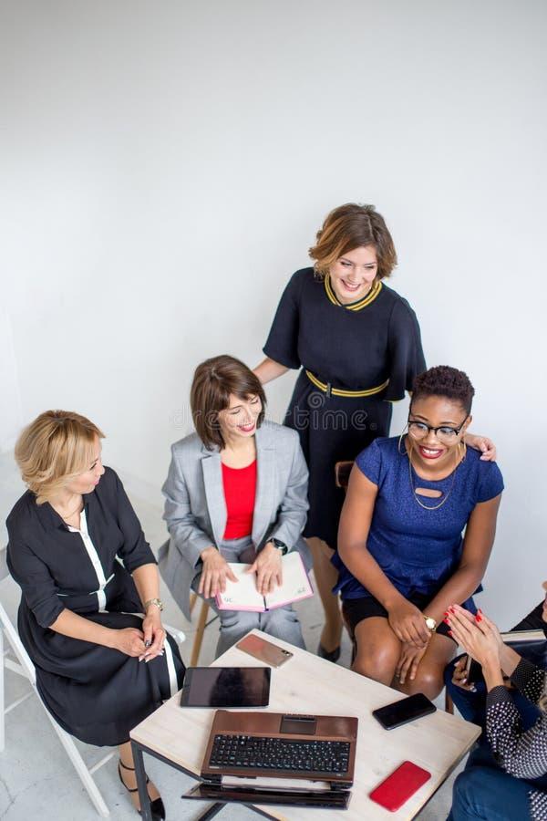 Grupo de equipe fêmea multi-étnico que trabalha no escritório imagens de stock royalty free