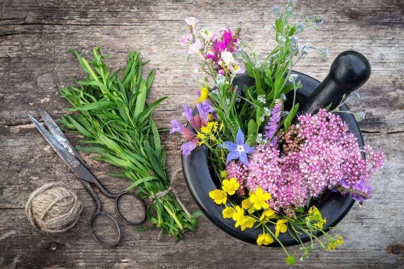 Grupo de ervas curas, de almofariz e de pilão, tesouras do vintage fotos de stock royalty free