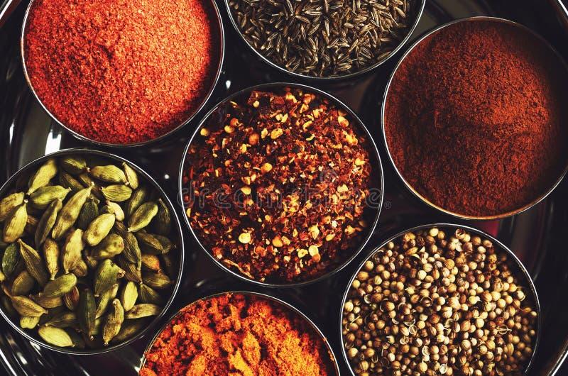 Grupo de especiarias indianas tradicionais para cozinhar fotos de stock