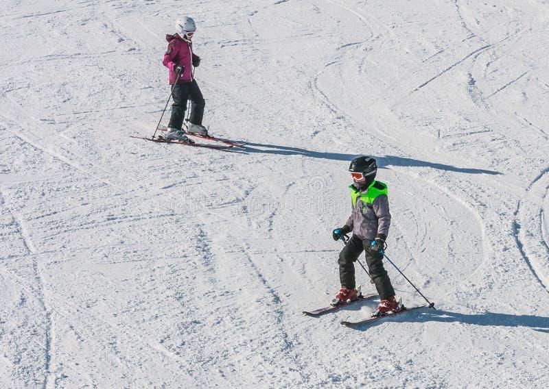 Grupo de esquiadores novos imagem de stock royalty free
