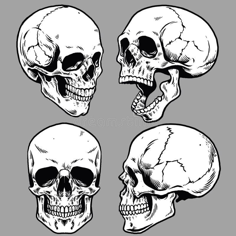Grupo de estilo disponivel do desenho do crânio ilustração royalty free