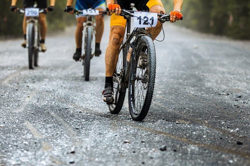 Grupo de estrada do cascalho do passeio dos ciclistas dos cavaleiros fotografia de stock royalty free