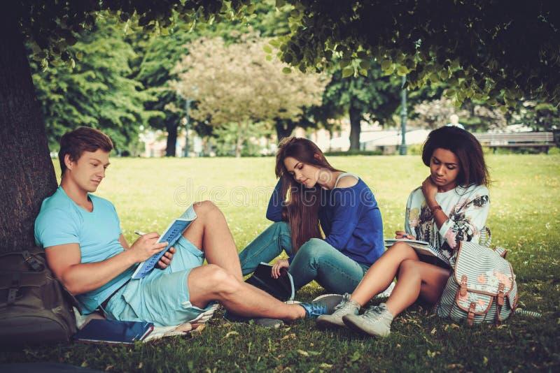 Grupo de estudiantes étnicos multi en un parque de la ciudad fotos de archivo libres de regalías