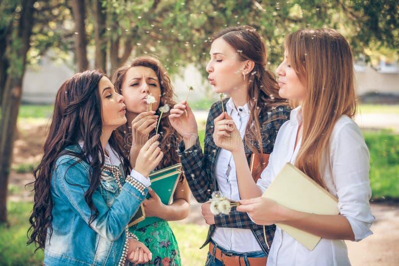 Grupo de estudiantes universitarias que soplan las semillas del diente de león foto de archivo libre de regalías