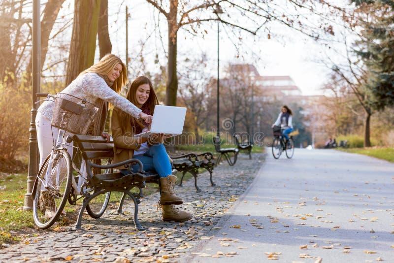 Grupo de estudiantes universitarias sonrientes en el banco de parque que trabaja en el ordenador portátil fotografía de archivo libre de regalías