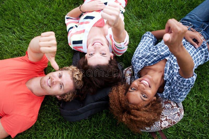 Grupo de estudiantes universitarios felices en hierba imagen de archivo libre de regalías