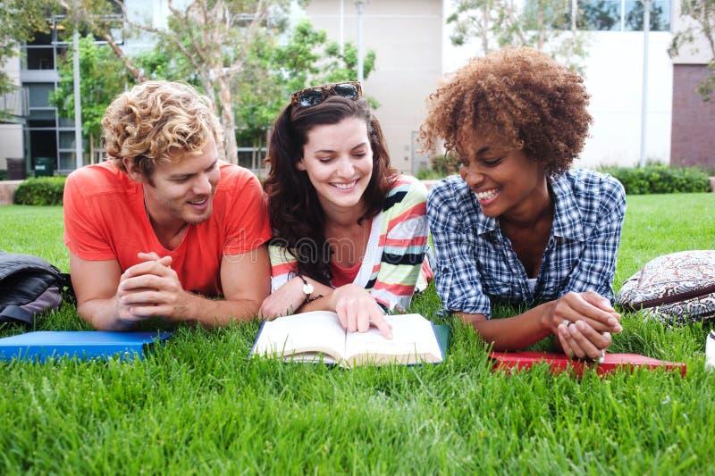 Grupo de estudiantes universitarios felices en hierba imágenes de archivo libres de regalías