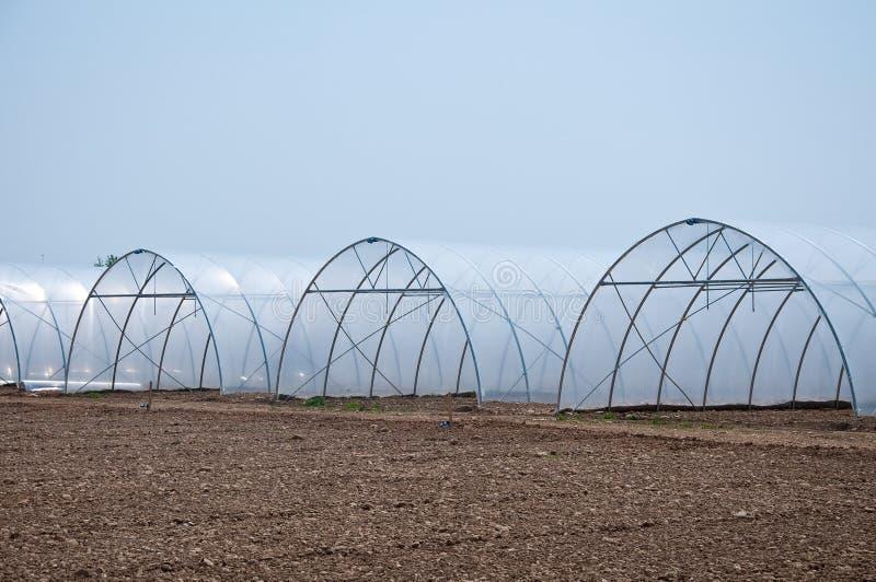 grupo de estufas novas que servem para fazer os vegetais crescer fotografia de stock