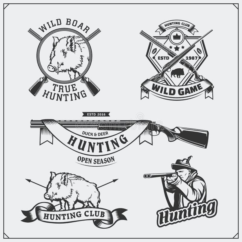 Grupo de etiquetas do javali da caça do vintage, de crachás, de emblemas e de elementos do projeto ilustração do vetor
