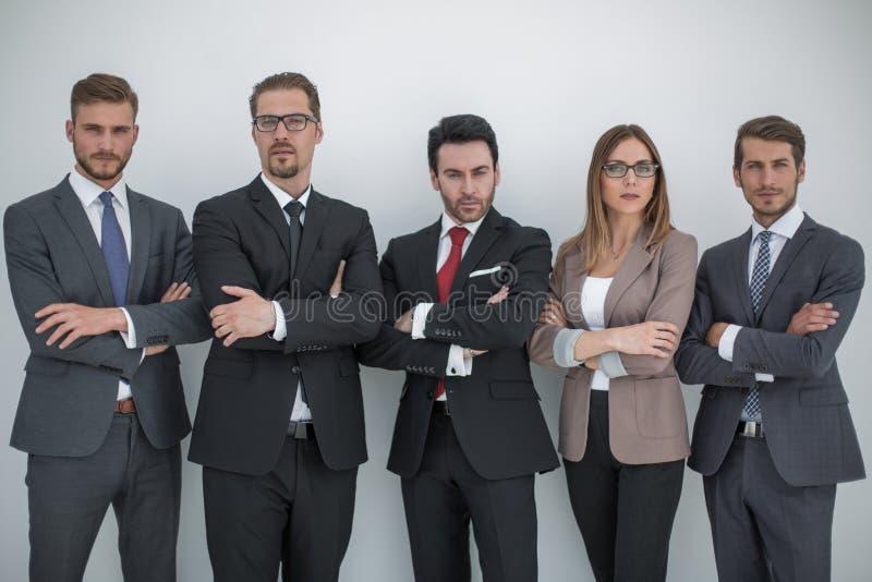 Grupo de executivos bem sucedidos imagem de stock