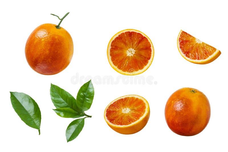 Grupo de fatias vermelhas da laranja pigmentada isoladas no fundo branco fotografia de stock royalty free