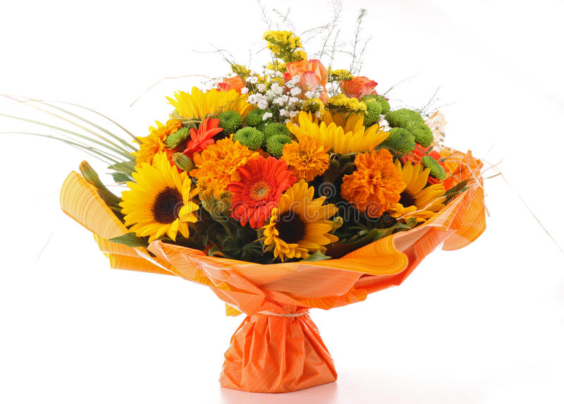 Grupo de flor isolado fotos de stock
