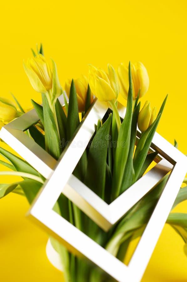 Grupo de flores amarelas do tulip imagens de stock royalty free