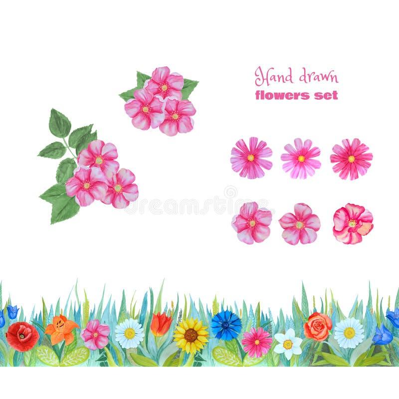 Grupo de flores cor-de-rosa Flores selvagens da rosa e do cosme Beira floral sem emenda ilustração royalty free