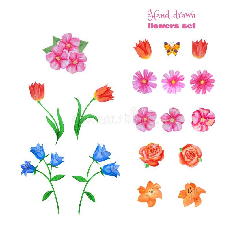 Grupo de flores diferentes isoladas no branco Papoilas, tulipas, rosas, lírios, centáureas, sinos azuis e outro ilustração royalty free