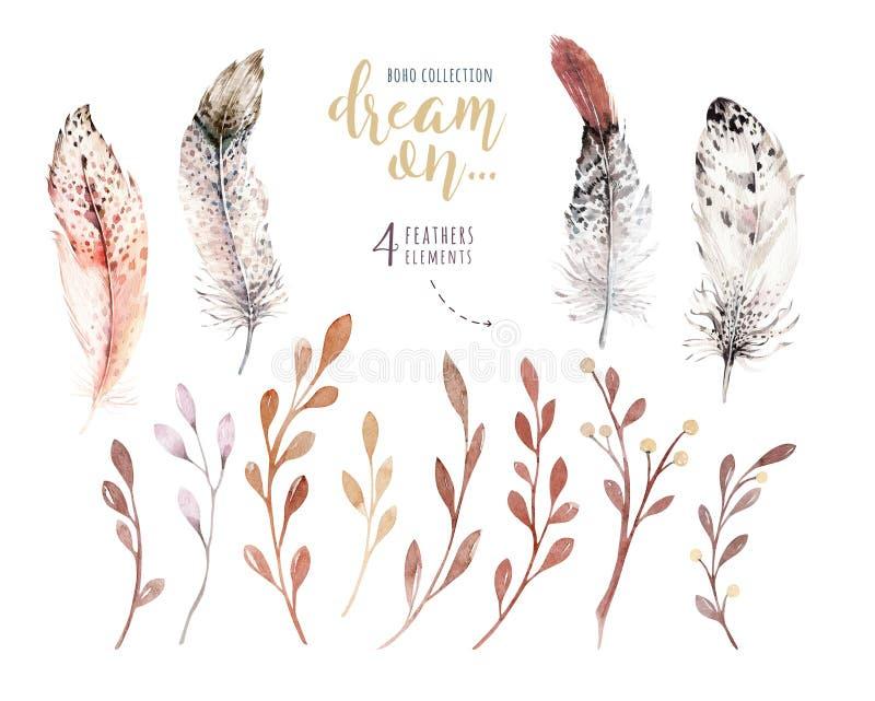 Grupo de flores e de penas no estilo da aquarela Ilustração no estilo indie Elemento isolado floral da decoração de Boho ilustração do vetor