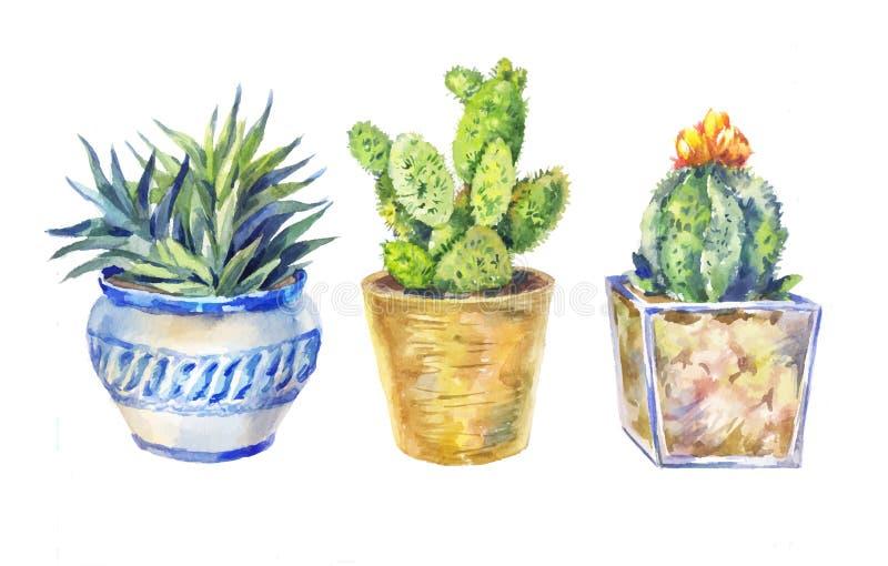 Grupo de flores em uns potenciômetros, plantas internas, ilustração da aquarela ilustração stock