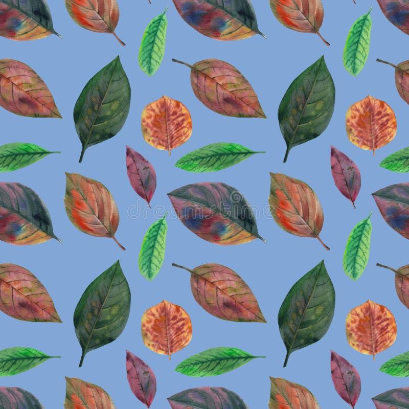 Grupo de folhas da aquarela Isolado no fundo branco Para o projeto ilustração stock