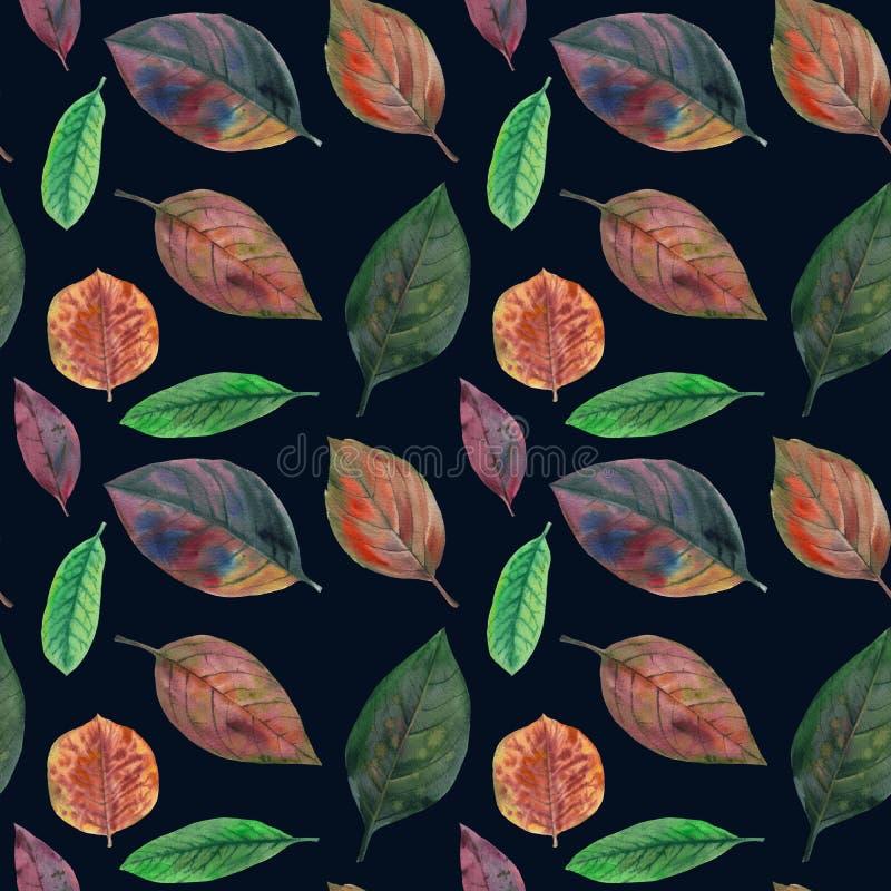 Grupo de folhas da aquarela Teste padr?o sem emenda ilustração do vetor