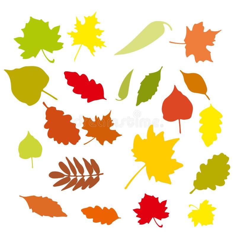 Grupo de folhas de outono coloridas dos desenhos animados Ilustração do vetor ilustração royalty free
