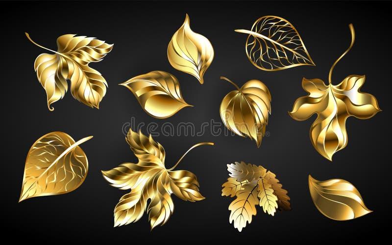 Grupo de folhas douradas no fundo preto ilustração do vetor