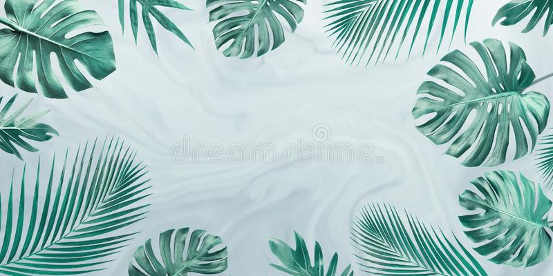 Grupo de folhas tropicais no fundo de mármore Copie o espaço Conceito da natureza e do verão imagem de stock royalty free
