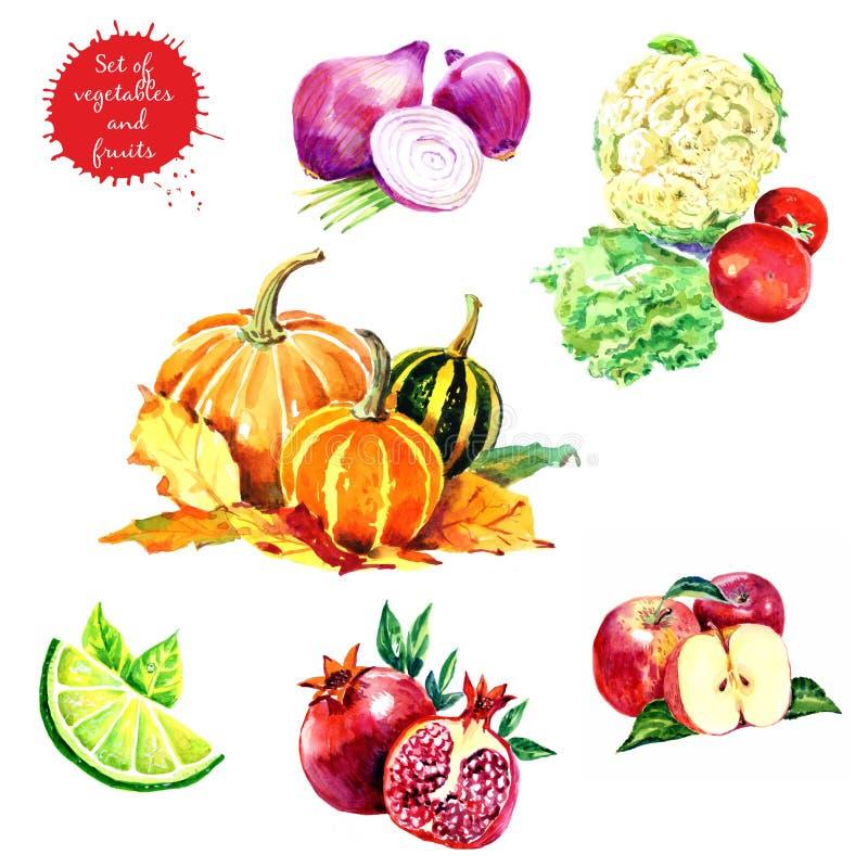 Grupo de frutas e legumes saborosos frescas ilustração do vetor