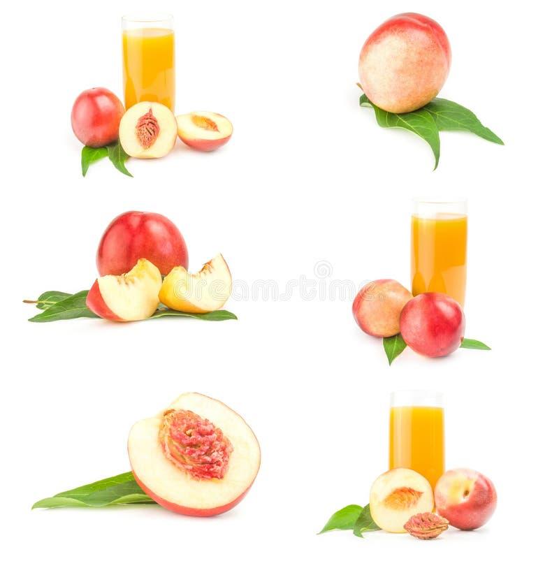 Grupo de frutas frescas de los melocotones aisladas en un recorte blanco foto de archivo