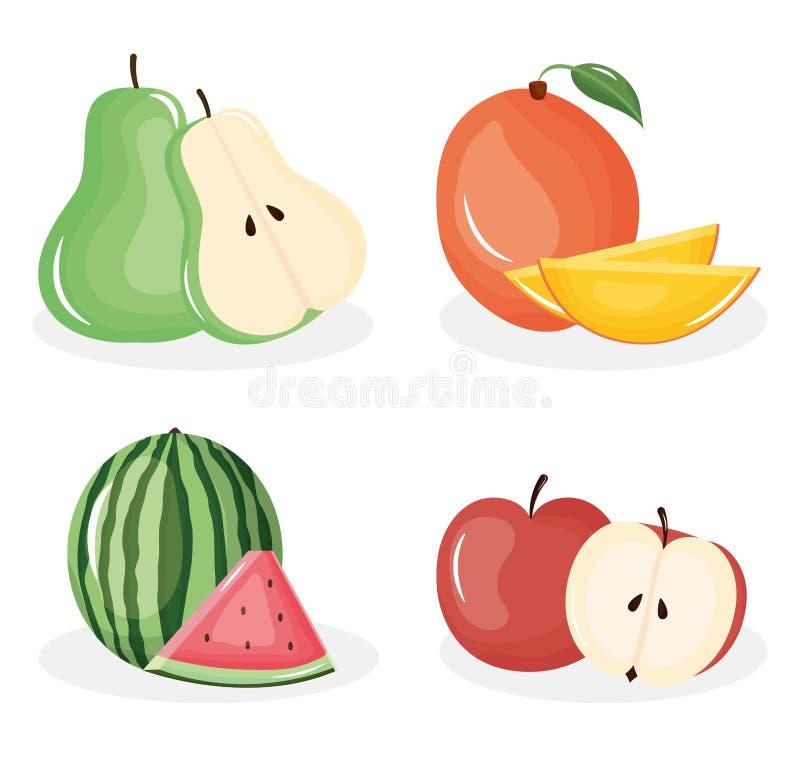Grupo de frutas tropicales y frescas stock de ilustración