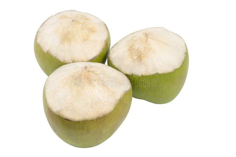 Grupo de fruto verde do coco isolado imagem de stock
