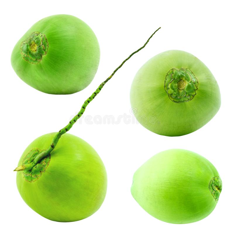 Grupo de fruto verde do coco isolado no fundo branco imagens de stock