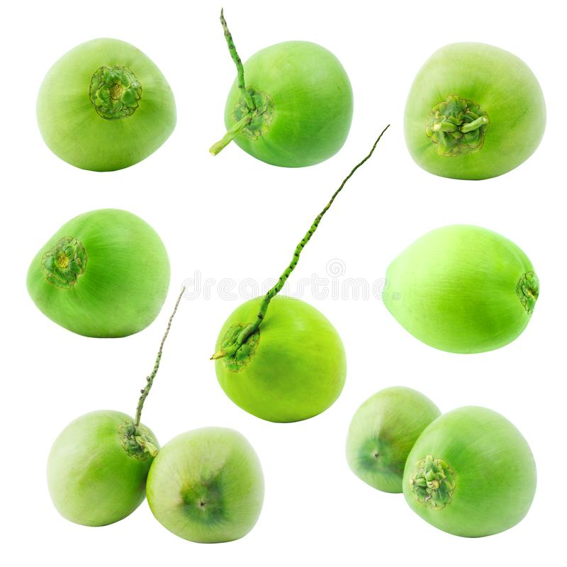 Grupo de fruto verde do coco isolado no fundo branco imagens de stock royalty free