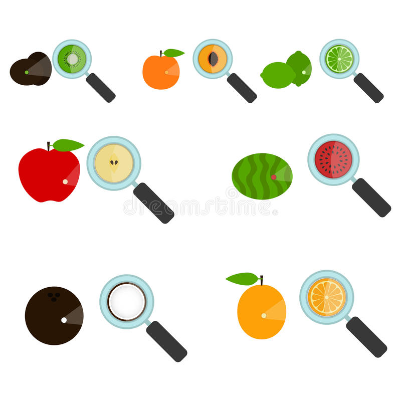 Grupo de frutos ampliados ilustração royalty free