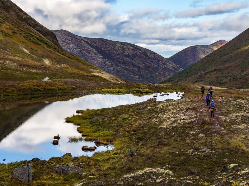 Grupo de fuga dos mochileiros, outono no vale de Alaska imagens de stock