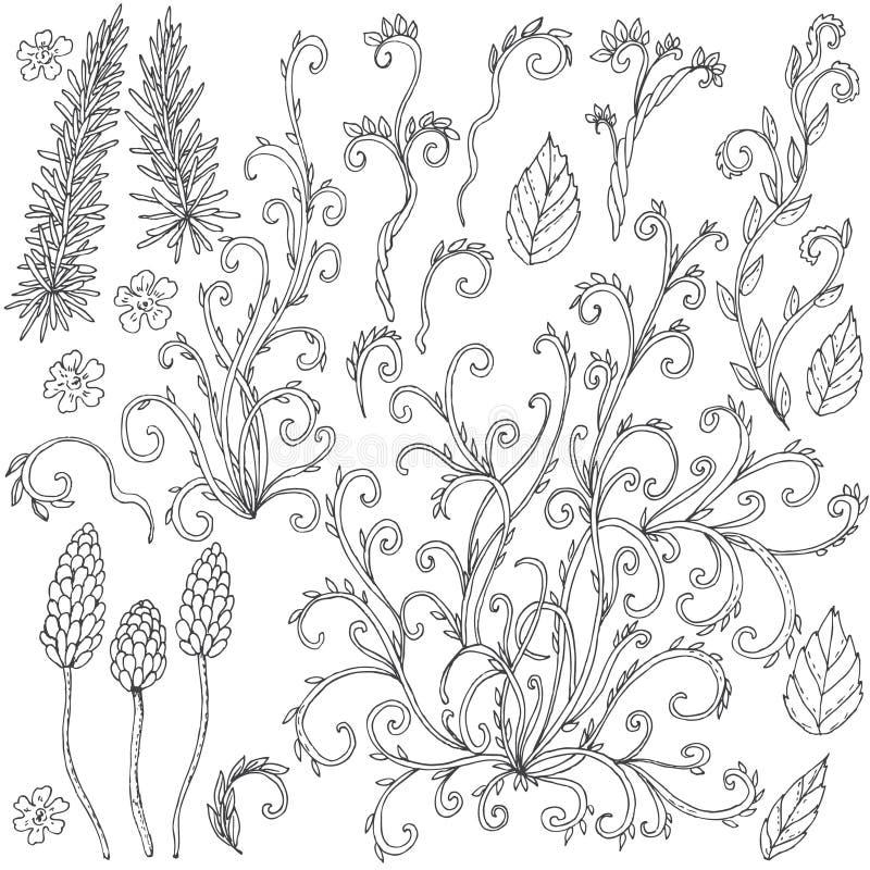 Grupo de garatujas florais ilustração do vetor