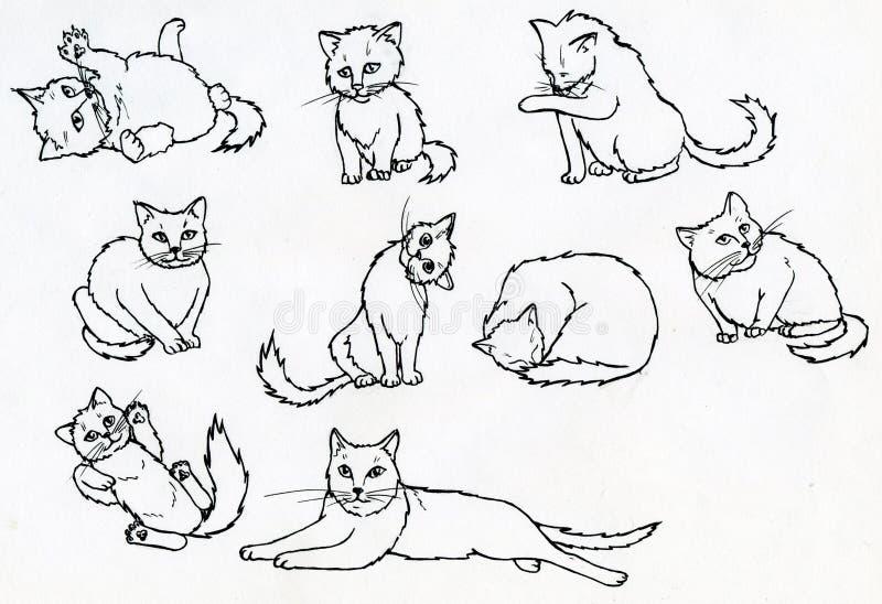 Grupo de gatos tirados tinta ilustração royalty free
